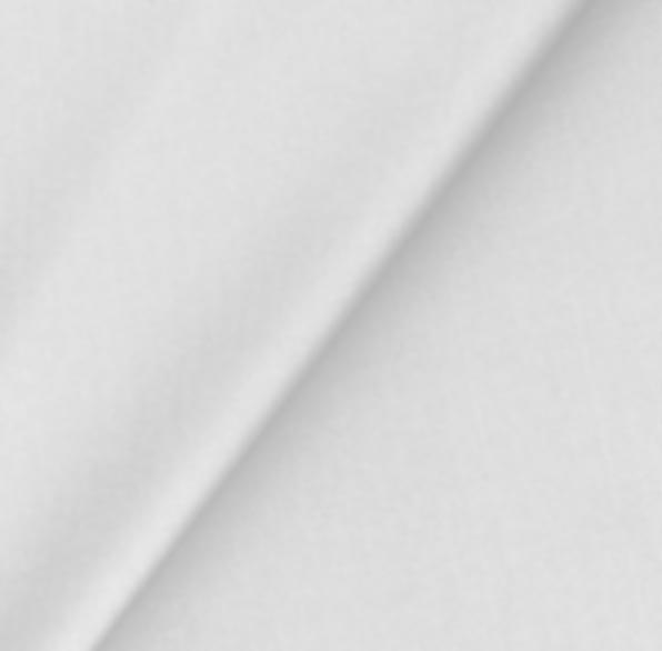 Tissu néoprène blanc